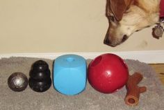 TOP DURABLE DOG TOYS, THE BEST LONG-LASTING TOYS. www.toytails.wordpress.com