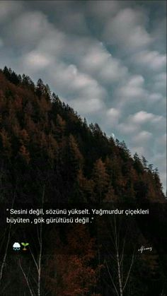 Real Quotes, Book Quotes, Learn Turkish Language, Fake Photo, Sweet Words, Meaningful Words, Galaxy Wallpaper, Quote Posters, Loneliness