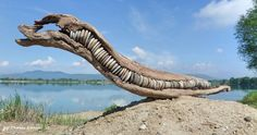Driftwood and stone art from Hungary by tamas kanya
