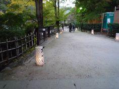 11/3(土)に行われた「たんころりん-香嵐渓のやさしいあかり-」の様子を紹介します。