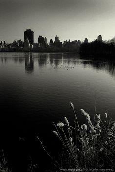 ARCHIVES JOURNAL PHOTO, il y a 7 ans: «Biosphère» La PHOTO du Jour du 7 janvier 2008 http://www.messyasz.fr/FDJ/2889 #NewYork #NY #NYC #Manhattan