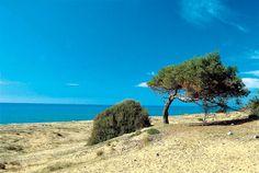 Καϊάφας - Ηλεία Beaches, Greece, Water, Outdoor, Greece Country, Gripe Water, Outdoors, Sands, Outdoor Games