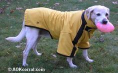 How to Make a Dog Coat - Dog Rain Coat Pattern