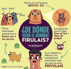 Weird Facts, Fun Facts, Spanish Practice, Curious Facts, Science Facts, Telling Stories, Trivia, Work On Yourself, Vocabulary