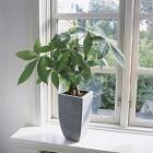 Huis goed ventileren: hulpmiddelen