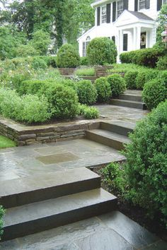 Bluestone Entry Walkway - traditional - Landscape - New York - Statile & Todd