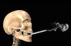 Wil je ook stoppen met roken, maar is dit je ondanks de vele pogingen niet gelukt?. Het wordt misschien dan tijd voor een andere aanpak. Lees hier voor meer informatie http://snelafvallenin2015.nl/Stoppenmetrokenmethode