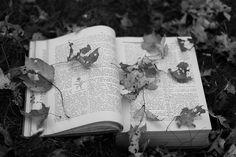 A natureza é o único livro que oferece um conteúdo valioso em todas as suas folhas. Johann Goetheo