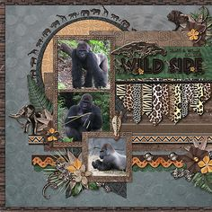 Gorillas - MouseScrappers - Disney Scrapbooking Gallery - Gorillas – MouseScrappers – Disney Scrapbooking Gallery Natalie's Place Designs – Welcome To The Jungle (kit and word art) Cindy Schneider – Set 132 Template Pack Travel Scrapbook Pages, Vacation Scrapbook, Digital Scrapbook Paper, Scrapbook Cards, Scrapbook Designs, Scrapbook Page Layouts, Disney Animal Kingdom, Creative Memories, Making Ideas