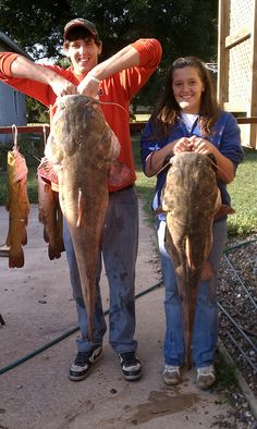 Check out these monster catfish! #Iowa #fishing