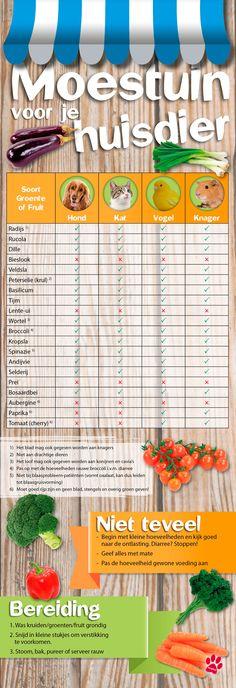 Infographic: welke groenten/fruit/kruiden voor je huisdier (hond, kat, konijn, cavia, hamster, rat, knager, vogel) uit de AH moestuin mag je aan je huisdier geven?