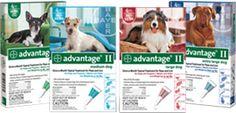 Advantage for Fleas and Ticks