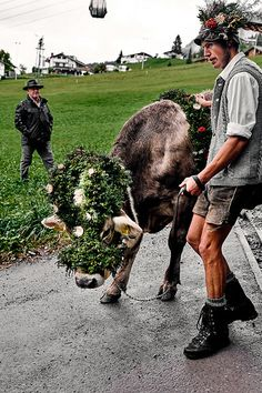 Viehscheid #kleinwalsertal #visitvorarlberg Down From The Mountain, Cultural Events, Traditional Outfits, The Locals, Culture, Beautiful