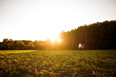 Sunset engagement session soy fields.