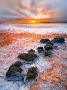 Larnaca Salt Lake, Republic of Cyprus