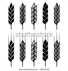 wheat ear icon set by attila dudas, via ShutterStock