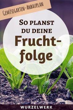 Fruchtfolge planen im Gemüsegarten: Hier kommt eine Liste zu Starkzehrern, Mittelzehrern und Schwachzehrern und eine Anleitung, wie du die Fruchtfolge für deinen Garten planen kannst. #Garten #Wurzelwerk.Net