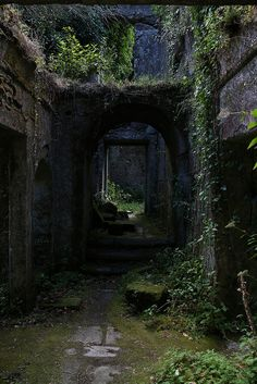 and the forest dreams eternally. Fantasy Places, Fantasy World, Abandoned Buildings, Abandoned Places, Abandoned Castles, Abandoned Mansions, Château Fort, Nature Aesthetic, Mystique