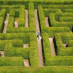Find People Walking On Green Bushes Labyrinth stock images in HD and millions of other royalty-free stock photos, illustrations and vectors in the Shutterstock collection. Thousands of new, high-quality pictures added every day. Find People, Czech Republic, Stepping Stones, Photo Editing, Royalty Free Stock Photos, Outdoor Decor, Travel, Image, Beautiful