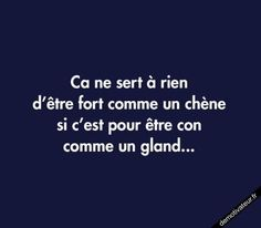 funny quotes about life humor Funny Quotes About Life, Life Quotes, Funny Life, Mantra, Quote Citation, French Quotes, Life Humor, Some Words, Words Quotes