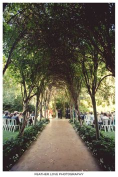 outdoor ceremony with a tree lined path