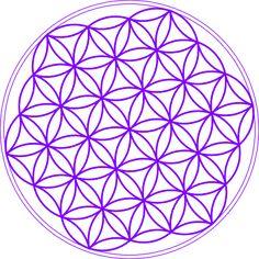 81 Mejores Imágenes De La Flor De La Vida Sacred Geometry Flower