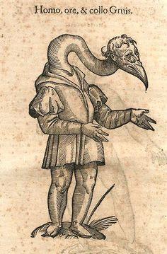 Ulisse Aldrovandi, Monstrorum historia by renzodionigi, via Flickr
