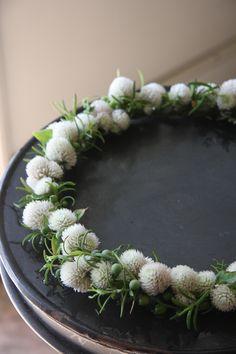 flower crown of globe amaranth Cut Flowers, Dried Flowers, Amaranth Flower, Wedding Bouquets, Wedding Flowers, Globe Amaranth, Flower Headdress, Flower Art, Flower Crowns