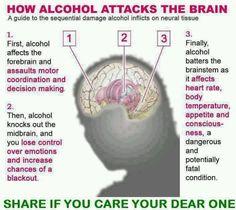 How Alcohol attacks the brain   www.NextGenCounseling.com