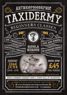 Nicola Hebson's Curiosity Workshop #taxidermy #blackburn