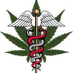 Who should be looking to use medical marijuana?This website, which provides Canadians everything with everything they need to know about medical marijuana includes a list of the medical conditions that are eligible for a medicinal marijuana prescription. Conditions on the list include: terminal illnesses, spinal cord injury, MS, HIV/AIDS, arthritis, epilepsy and many more diseases. Scroll to the bottom of this page to see the complete list of conditions that may benefit. In the U.S., the ...