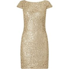 Adrianna Papell Sequin Chemical Lace Shift Dress , Gold (£145) ❤ liked on Polyvore featuring dresses, gold, brown cocktail dress, lace cocktail dress, cap sleeve cocktail dress, short cocktail dresses and embellished cocktail dress