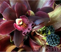 """Aria Style plum orchids and berries. This represents my final concepts: (1) """"rich"""" dark fall color scheme of eggplant, merlot, blackberry, and green (2) wine and berries, (3) hanging gardens."""