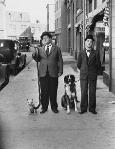 We just want to say happy Father's Day to all the dog dads out there. We want to honor the guys who take good care of the pups they love all year long. Every dog dad deserves to be treated like a celebrity for a day. #dogtime #fathersday #celebritydog Laurel Und Hardy, Stan Laurel Oliver Hardy, Celebrity Dogs, Celebrity Pictures, Celebrity Crush, Fathers Day Pictures, Dog Pictures, New Star Trek, Michael Bay