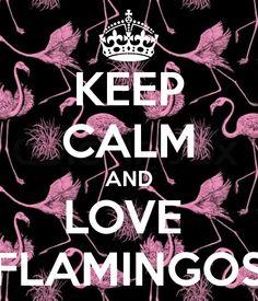 keep calm and love flamingos - Google Search