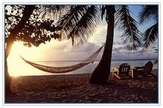 Relaxing in the hammock--favorite past time. I will have this in the backyard