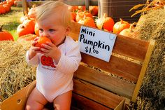 Even the little ones love pickin' pumpkins at Cagle's Family Farms in Canton, Georgia.