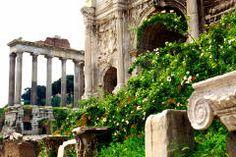 Italy - Rome - Roman Forum HZ