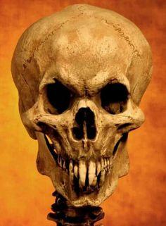 Vamp skull