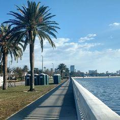 On the board walk!  #morningwalk #sunnytampa #tampa #tampaflorida #wineandwanderlust #anitaboratravels #bayshoreboulevard