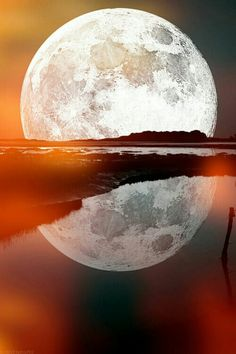 The reflections of the moon!