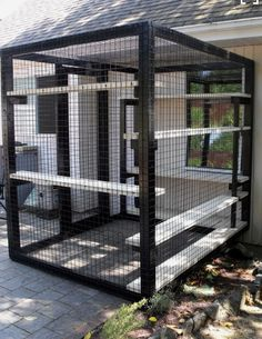 Cats Toys Ideas - - Ideal toys for small cats Outdoor Cat Enclosure, Reptile Enclosure, Image Chat, Cat Cages, Cat Run, Cat Towers, Ideal Toys, Cat Playground, Cat Tunnel