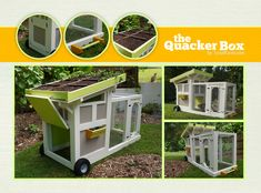 Duck house with features -- want!! But first, I need some ducks...
