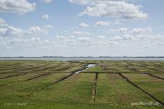 Impressionen von der eingedeichten Halbinsel Nordstrand in Nordfriesland // Foto: MeerART Salt Marsh, Strand, Coast, Germany, Country Roads, Outdoor, Photos, North Sea, Paisajes