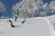 Perfect Skiing - Niseko, Japan-- I would have never thought Japan...but it sure is pretty!