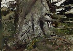 Andrew Wyeth, Cat Spruce