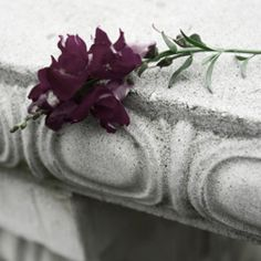Leave a permanent memorial to your mother by writing a beautiful eulogy. Reading example eulogies for a mother is the best place to start. Funeral Songs For Dad, Songs About Dads, Funeral Eulogy, Funeral Ideas, Eulogy Quotes, Writing A Eulogy, Funny Stories To Tell, Best Speeches, Losing A Loved One