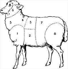 sheep-butcher-diagram