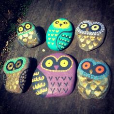 My painted rock owls, flat.
