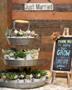 rustic wedding favors with cute succulent